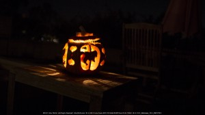 A pumpkin with carousel horses carved into it